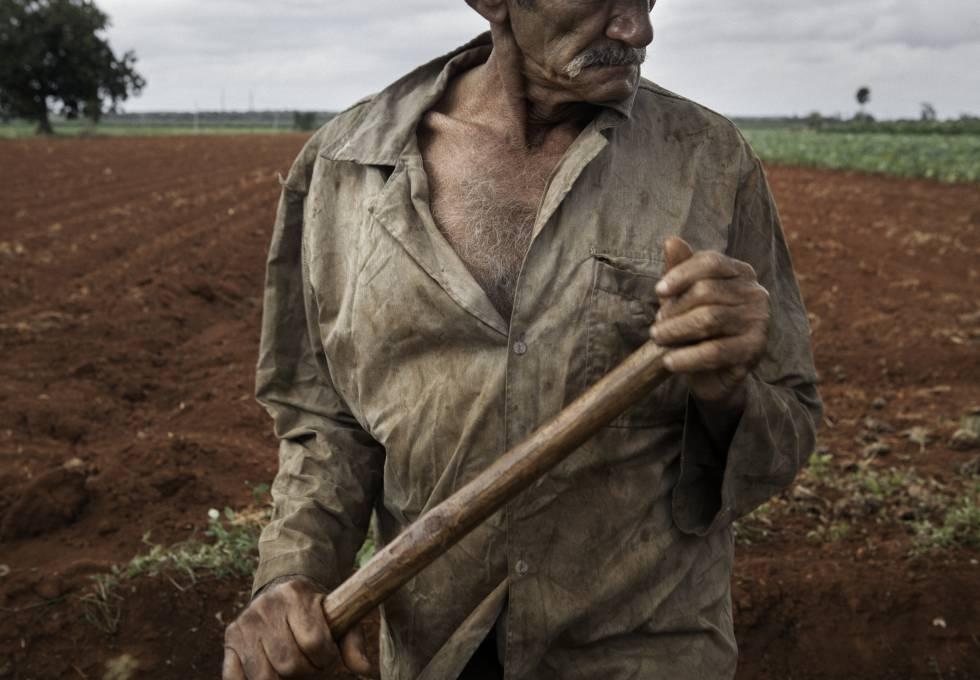 el comunismo y el hambre